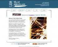 Blue Nandina Studio - Website